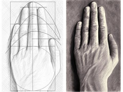 Tutorial : How to draw hands