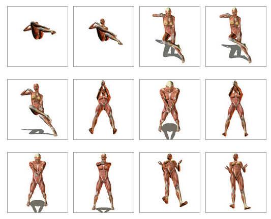 cuerpo humano en 3D