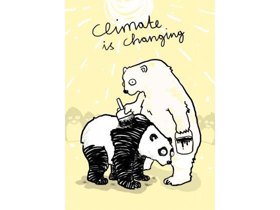 oso panda y oso polar