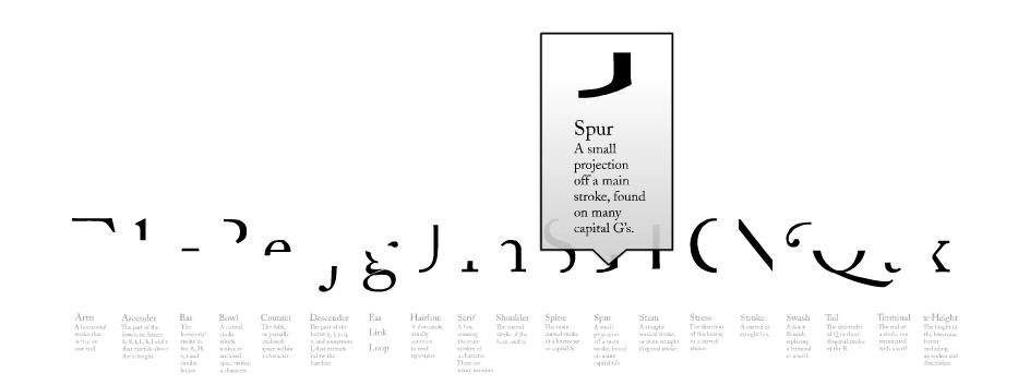 Partes de la tipografía