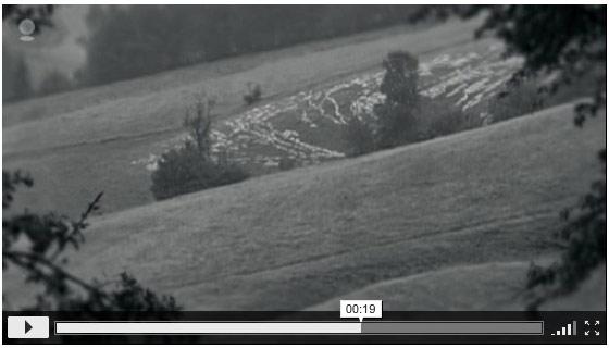 video-flickr