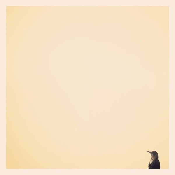 fotografía minimalista