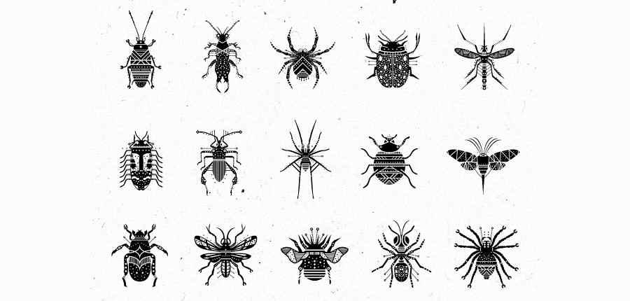 insectos imaginarios