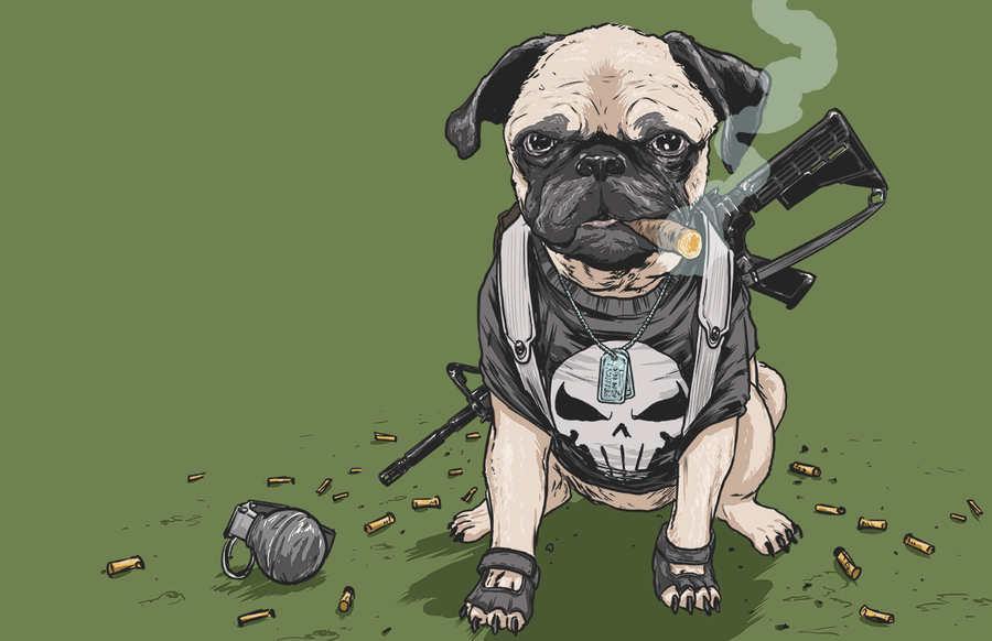 disfraz de perro universo marvel