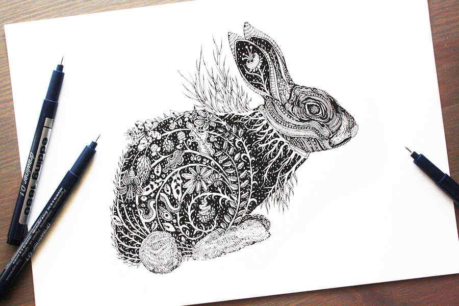 animales ilustrados