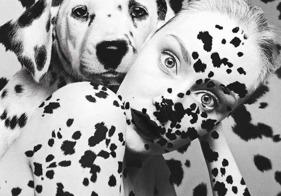 fotos surrealistas con animales y ojos