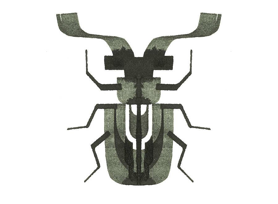 insecto hecho con caligrafía