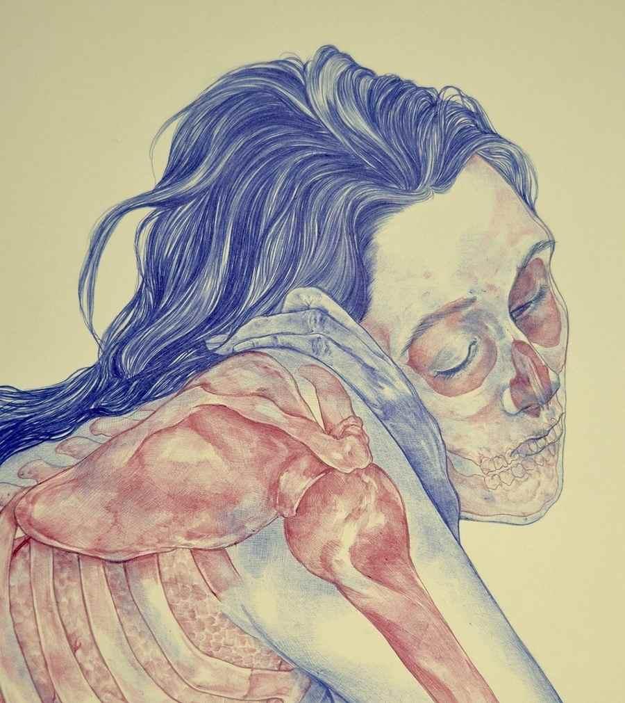 ilustraciones de anatomía humana