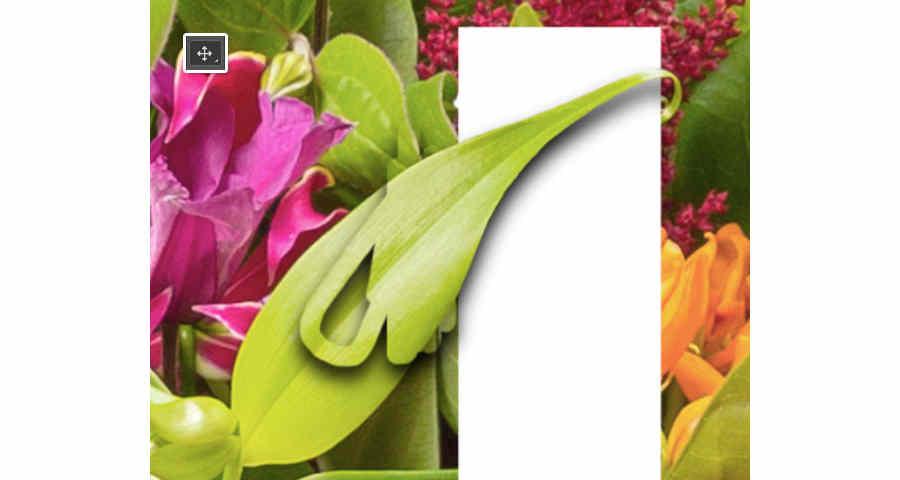 textos dentro de bouquet de flores