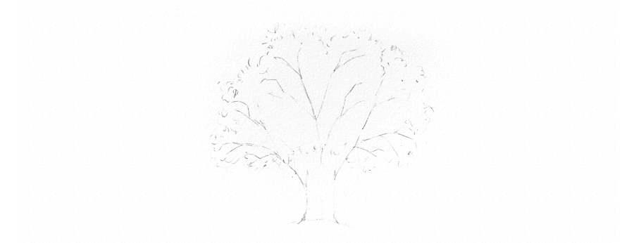 cómo dibujar árboles a lápiz