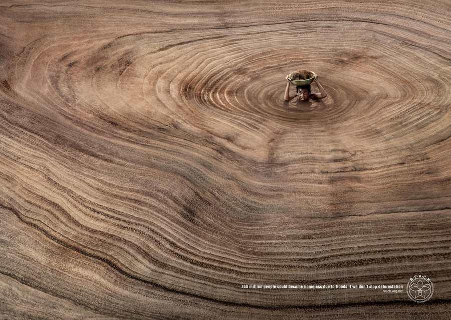 publicidad deforestación e inundaciones