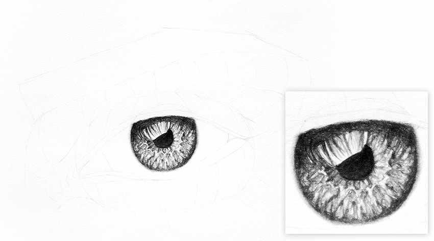 Cómo Dibujar Un Ojo Realista A Lápiz En Muy Pocos Pasos