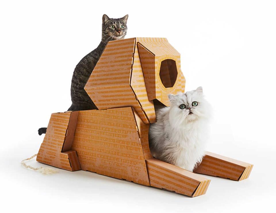 cajas para gatos