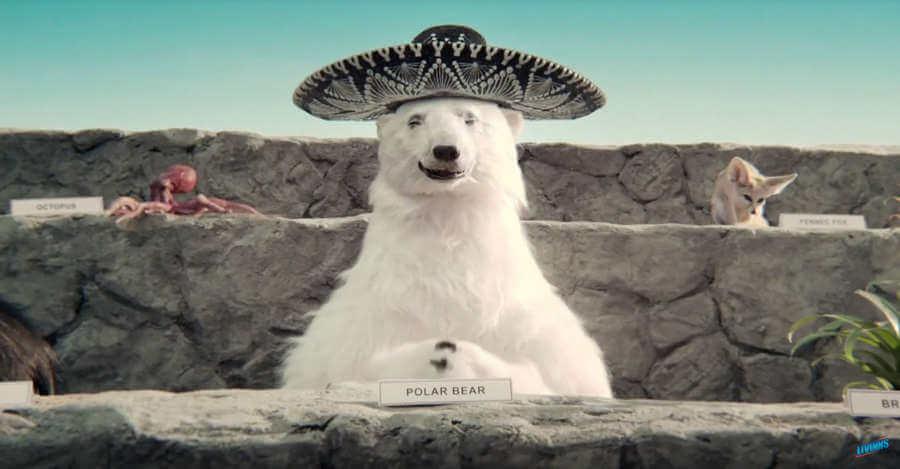 Aguacates mexicanos en el Super Bowl
